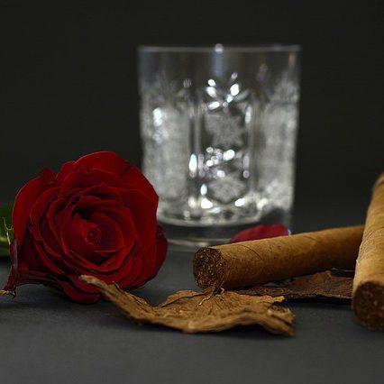 rose-1473696_640